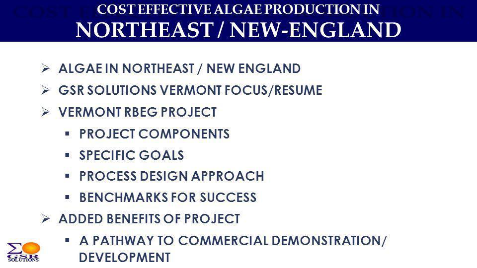 COST EFFECTIVE ALGAE PRODUCTION IN NORTHEAST / NEW-ENGLAND ALGAE IN NORTHEAST / NEW ENGLAND GSR SOLUTIONS VERMONT FOCUS/RESUME VERMONT RBEG PROJECT PR
