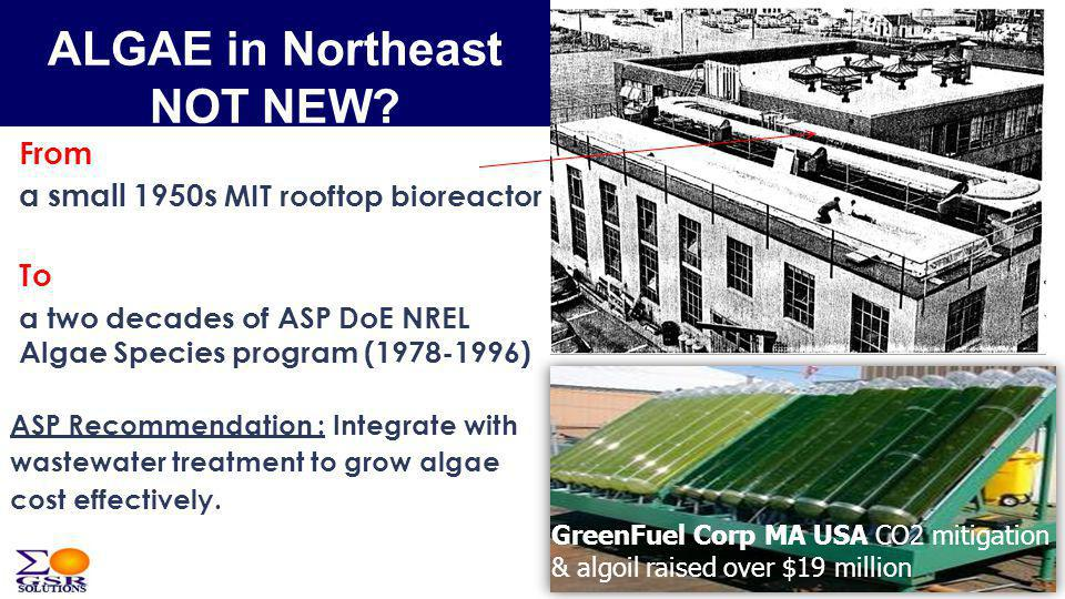 From a small 1950s MIT rooftop bioreactor To a two decades of ASP DoE NREL Algae Species program (1978-1996) ASP Recommendation : Integrate with wastewater treatment to grow algae cost effectively.