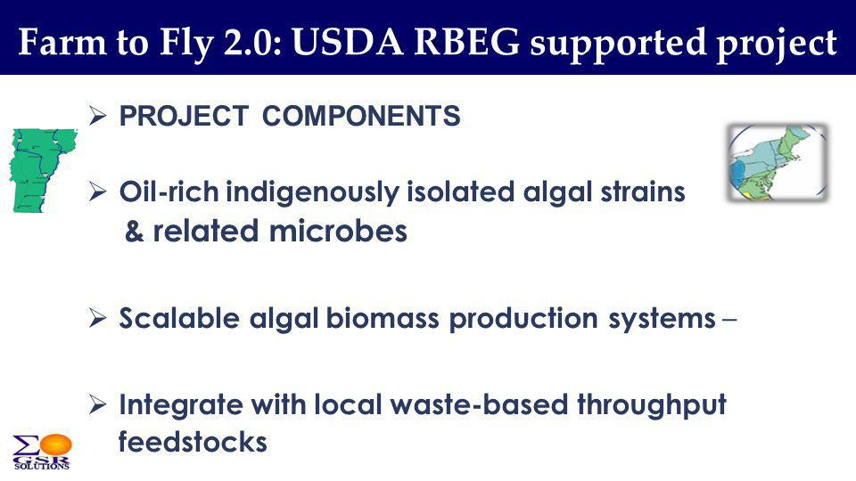 Farm to Fly 2.0: USDA RBEG supported project PROJECT COMPONENTS Oil-rich indigenously isolated algal strains & related microbes Scalable algal biomass