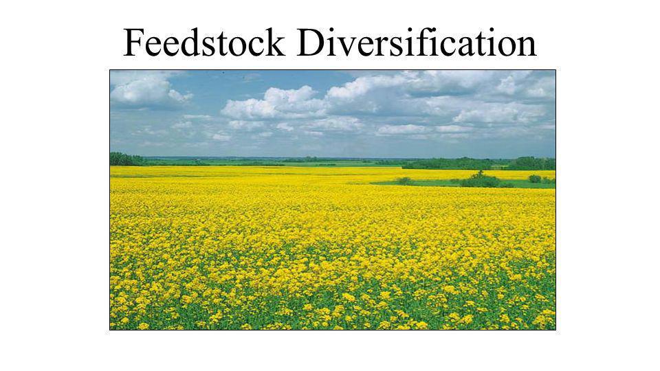 Feedstock Diversification