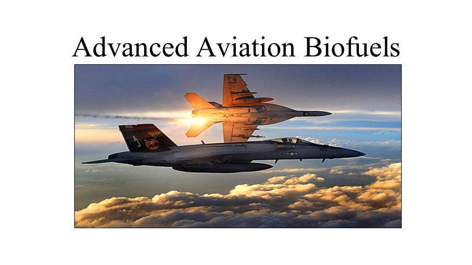 Advanced Aviation Biofuels