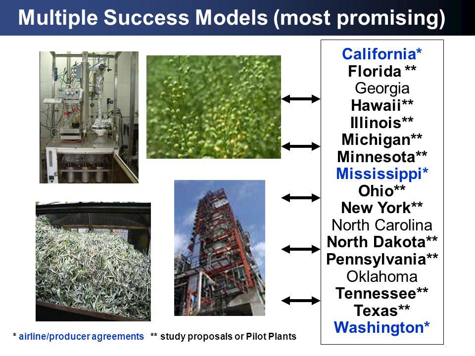 Multiple Success Models (most promising) California* Florida ** Georgia Hawaii** Illinois** Michigan** Minnesota** Mississippi* Ohio** New York** Nort