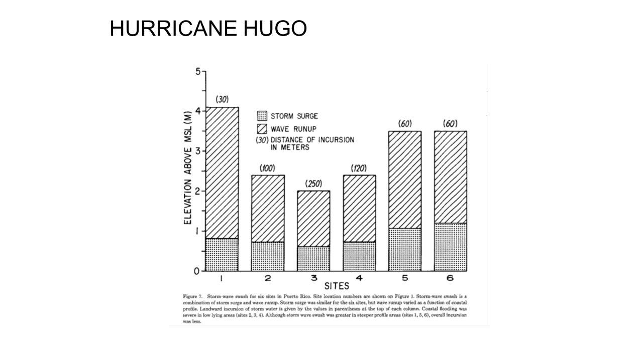 Hurricane Hugo (1989)