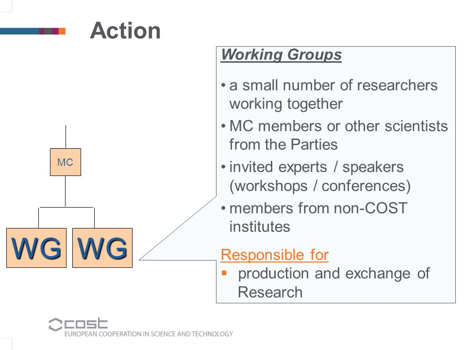 Action Working Groups a small number of researchers working together MC members or other scientists from the Parties invited experts / speakers (workshops / conferences) members from non-COST institutes Responsible for production and exchange of Research MC WGWG