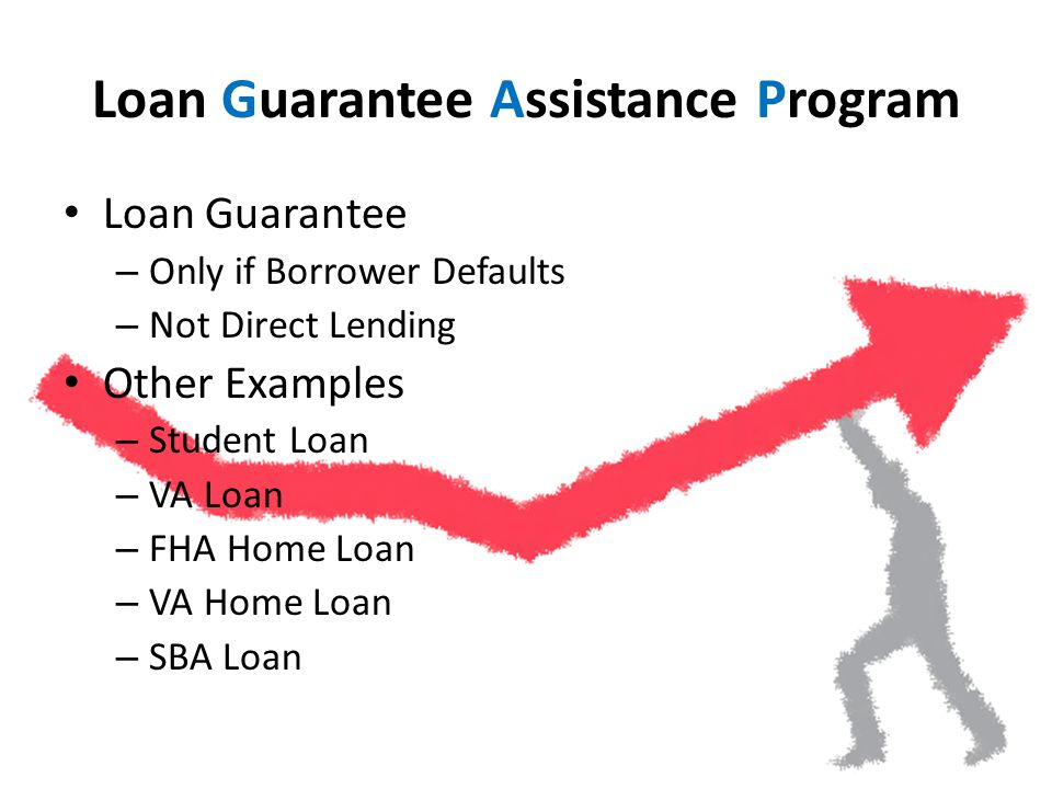 Loan Guarantee Assistance Program Loan Guarantee – Only if Borrower Defaults – Not Direct Lending Other Examples – Student Loan – VA Loan – FHA Home Loan – VA Home Loan – SBA Loan