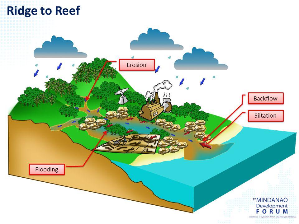 Siltation Erosion Backflow Ridge to Reef Flooding