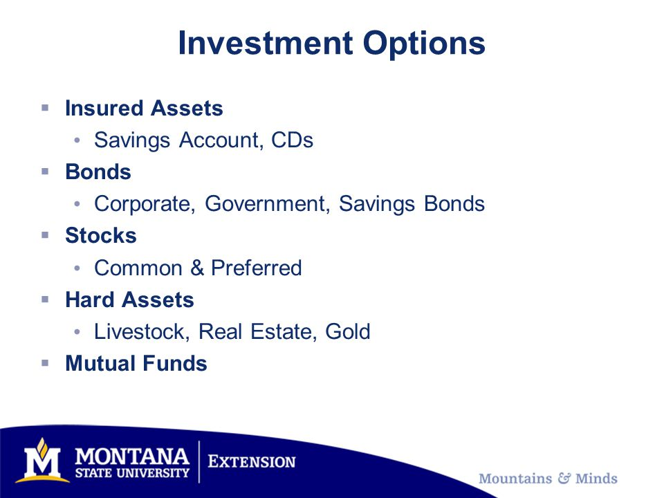 Investment Options Insured Assets Savings Account, CDs Bonds Corporate, Government, Savings Bonds Stocks Common & Preferred Hard Assets Livestock, Real Estate, Gold Mutual Funds