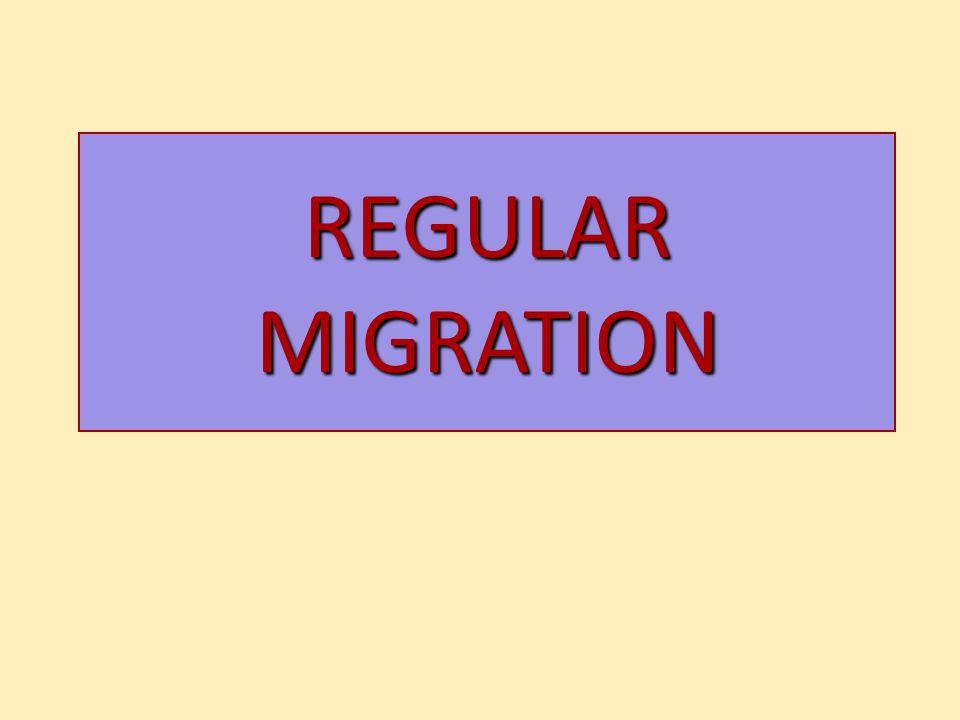 REGULAR MIGRATION