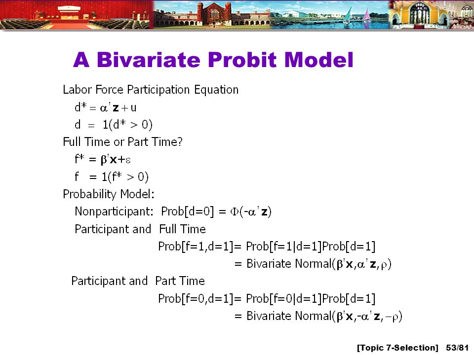 [Topic 7-Selection] 53/81 A Bivariate Probit Model