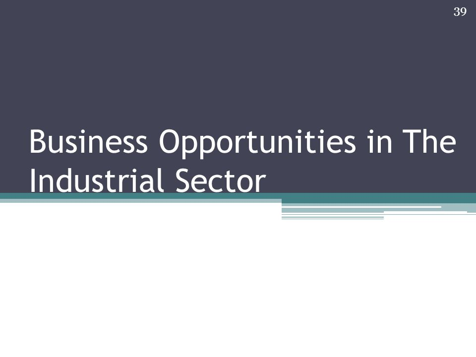 Business Opportunities in The Industrial Sector 39