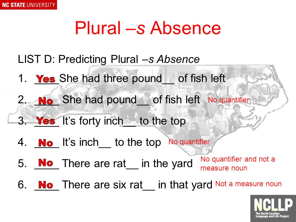 Plural –s Absence LIST B: Nouns that Do Not Require -s to be Plural 1.We caught two hundred pound_ of flounder 2.How many bushel_ does he have.