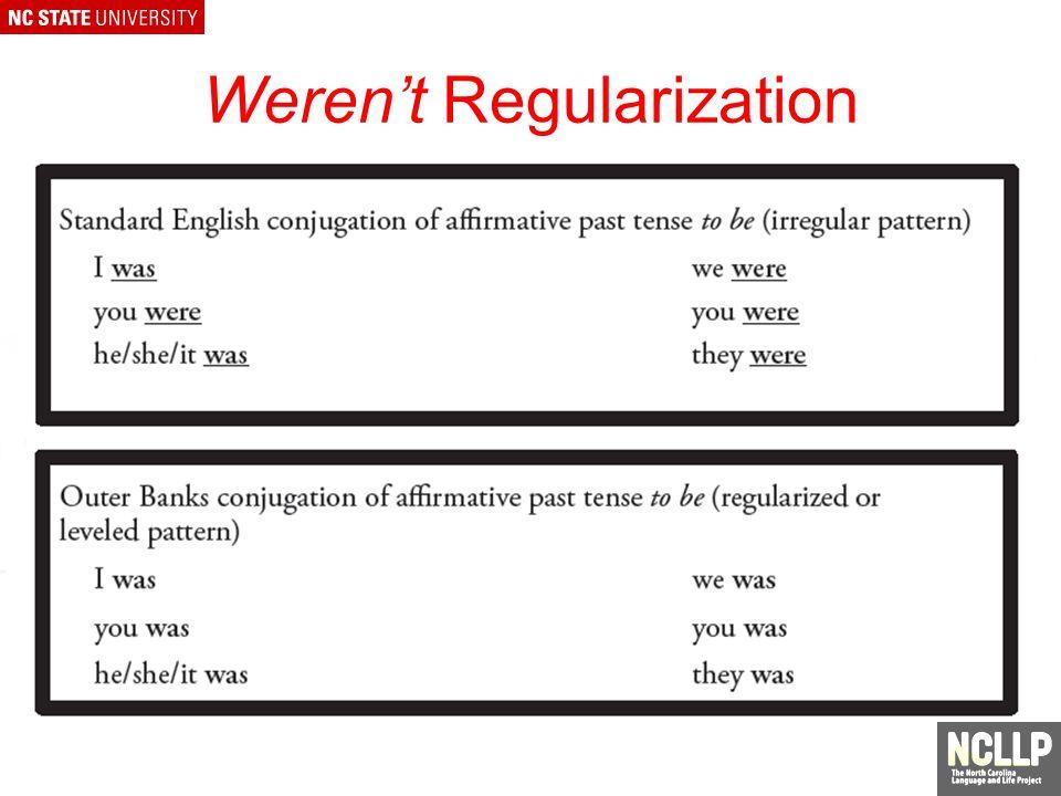 Werent Regularization