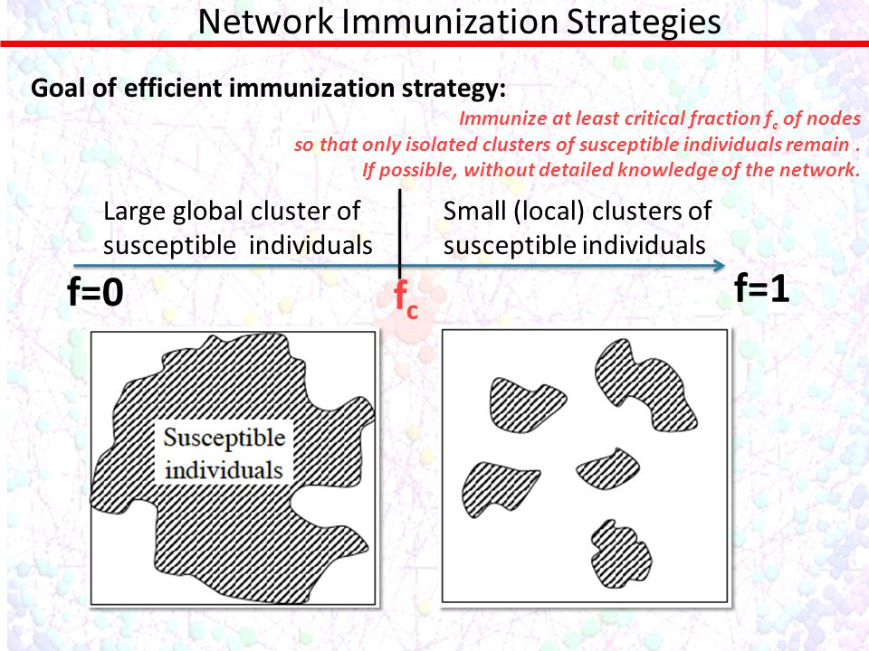 Network Immunization Strategies Goal of efficient immunization strategy: Immunize at least critical fraction f c of nodes so that only isolated clusters of susceptible individuals remain.
