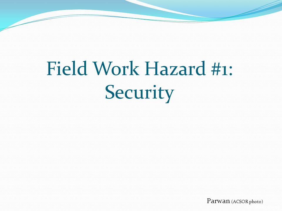 Parwan (ACSOR photo) Field Work Hazard #1: Security (ACSOR photo)