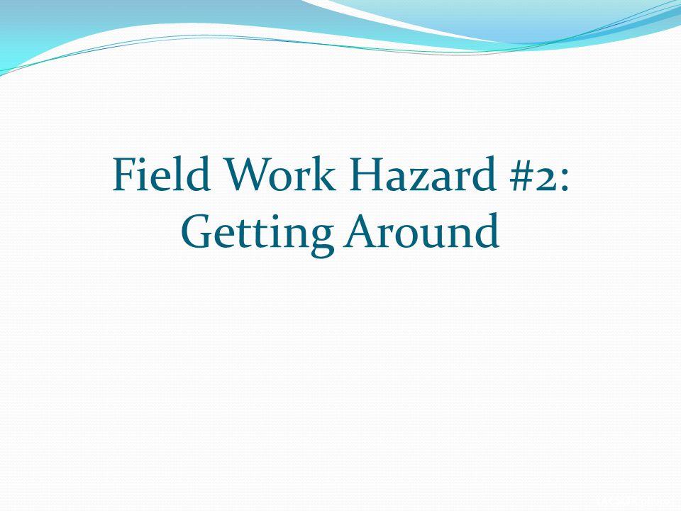 (ACSOR photo) Field Work Hazard #2: Getting Around