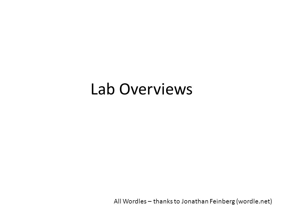 Lab Overviews All Wordles – thanks to Jonathan Feinberg (wordle.net)