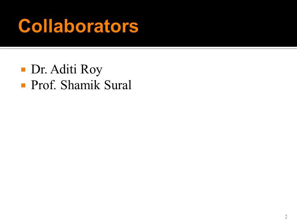 Dr. Aditi Roy Prof. Shamik Sural 2