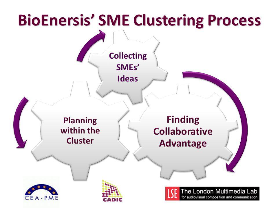 BioEnersis SME Clustering Process