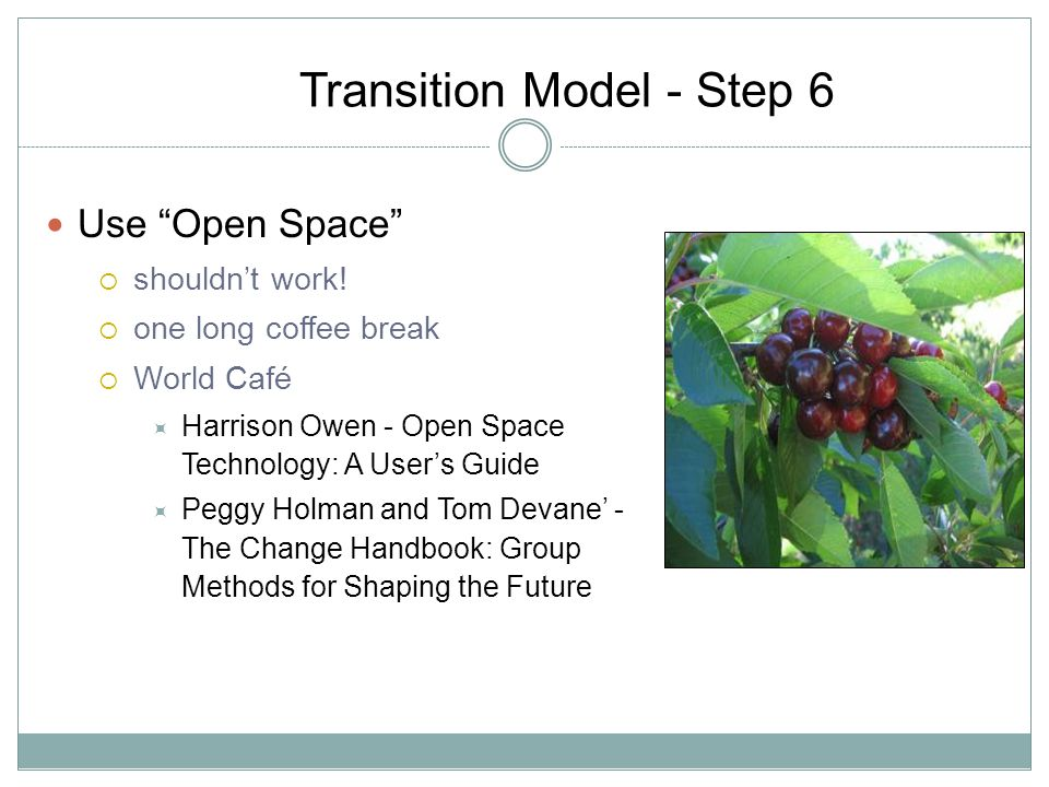 Transition Model - Step 6 Use Open Space shouldnt work.