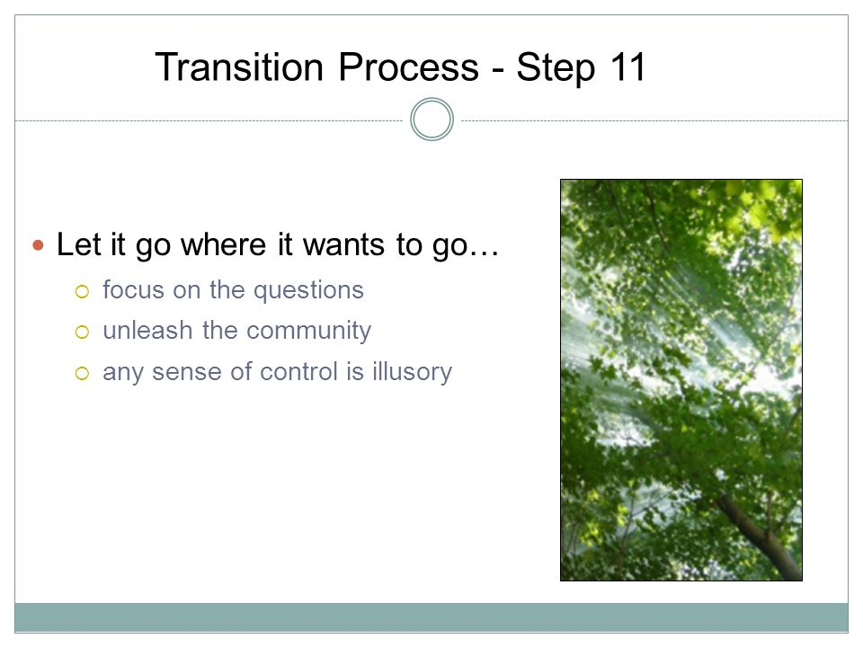 Transition Process - Step 11 Let it go where it wants to go… focus on the questions unleash the community any sense of control is illusory