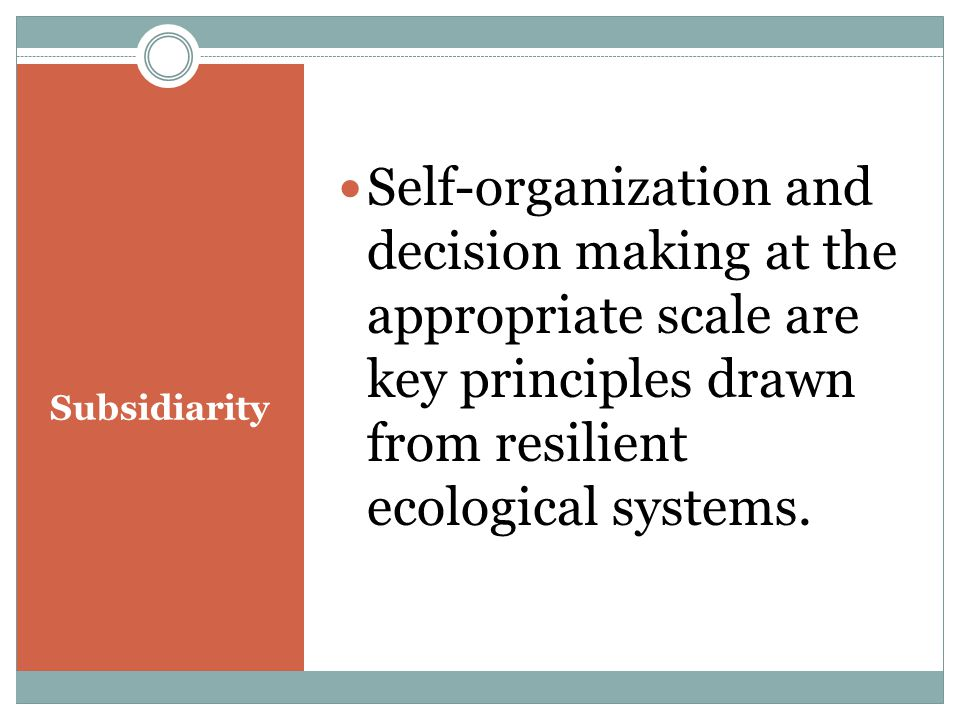 Subsidiarity Self-organization and decision making at the appropriate scale are key principles drawn from resilient ecological systems.