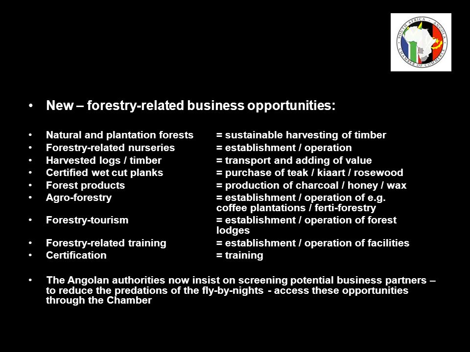 New – forestry-related business opportunities: Natural and plantation forests = sustainable harvesting of timber Forestry-related nurseries = establishment / operation Harvested logs / timber = transport and adding of value Certified wet cut planks = purchase of teak / kiaart / rosewood Forest products= production of charcoal / honey / wax Agro-forestry = establishment / operation of e.g.