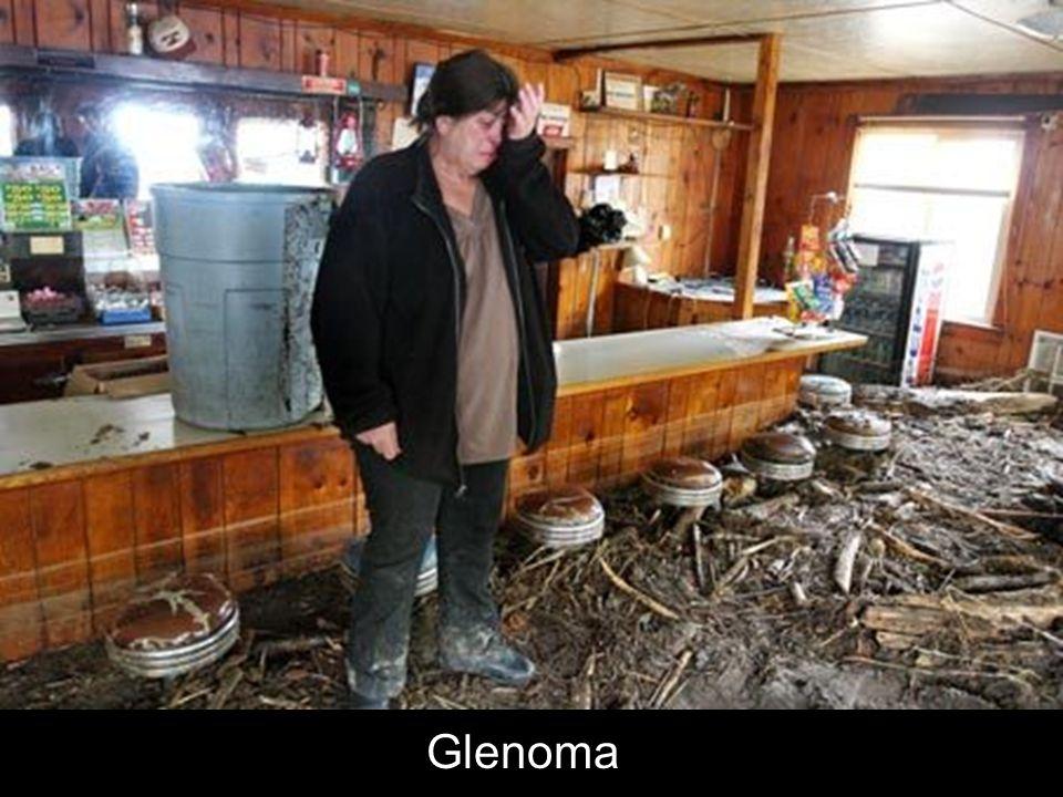Glenoma