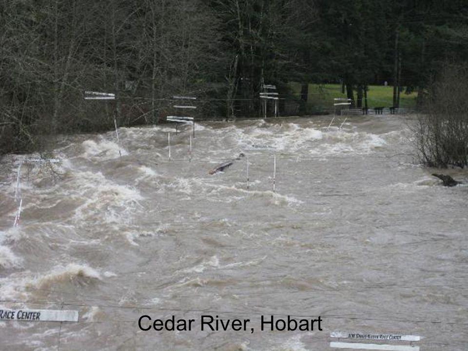 Cedar River, Hobart