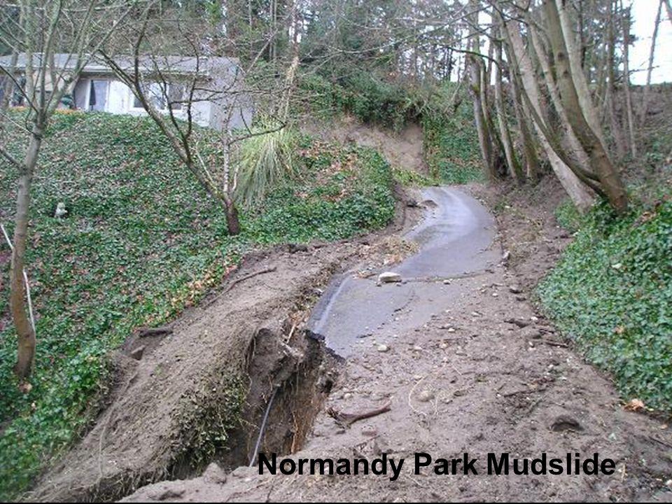 Normandy Park Mudslide