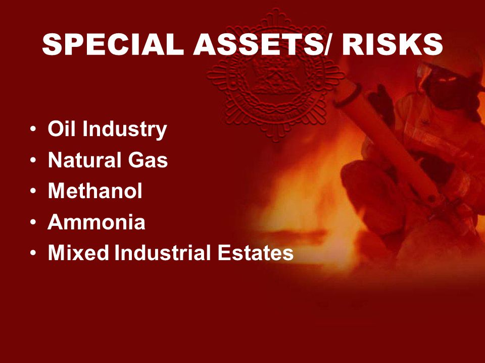 SPECIAL ASSETS/ RISKS Oil Industry Natural Gas Methanol Ammonia Mixed Industrial Estates