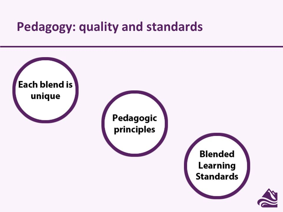 Pedagogy: quality and standards