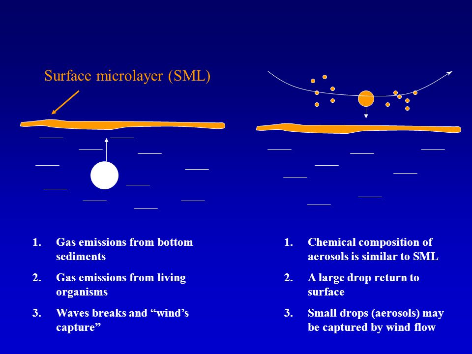 1.Gas emissions from bottom sediments 2.Gas emissions from living organisms 3.Waves breaks and winds capture 1.Chemical composition of aerosols is similar to SML 2.A large drop return to surface 3.Small drops (aerosols) may be captured by wind flow Surface microlayer (SML)