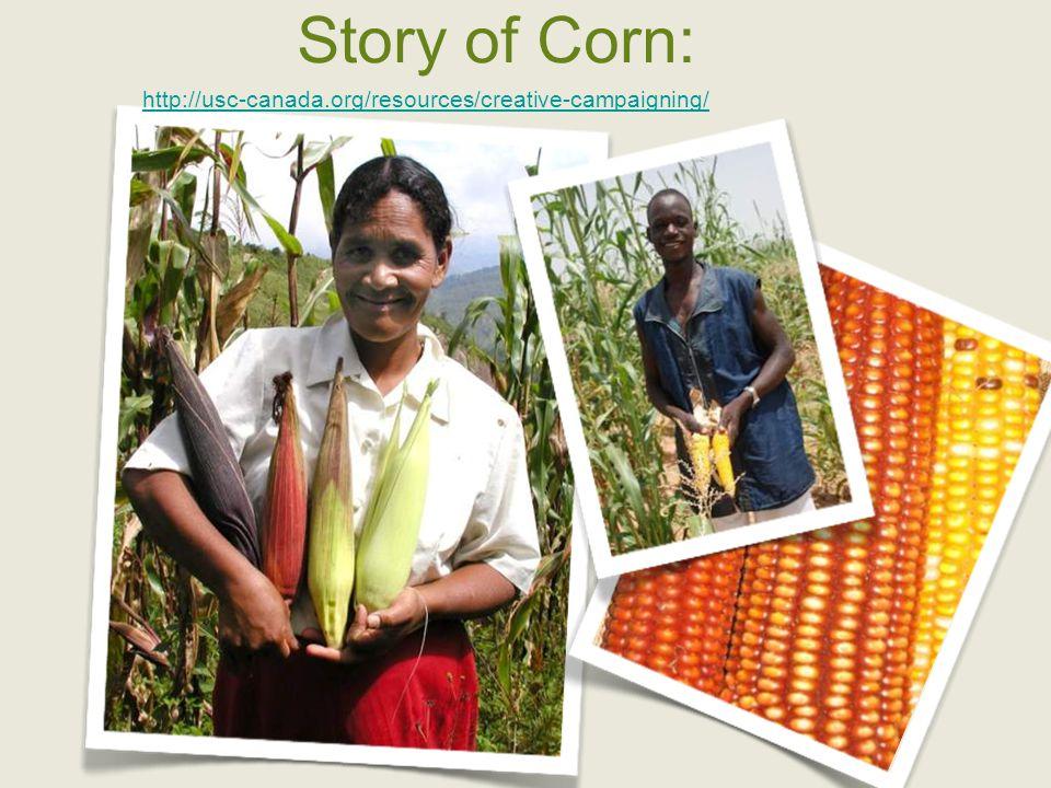 The Everything Seed 2006 Storybook by Carole Martignacco
