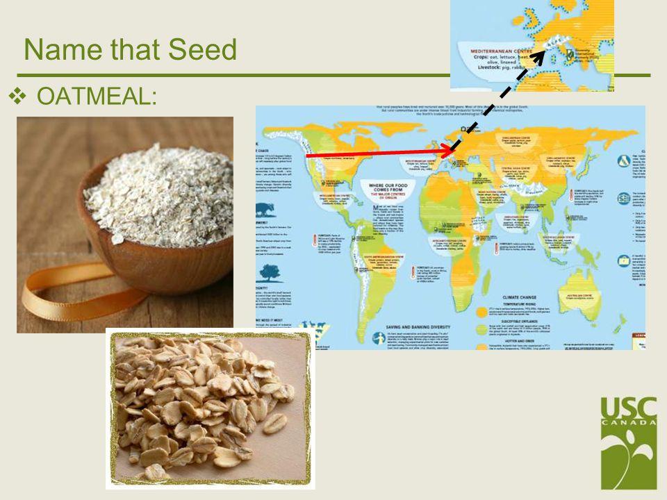 Seed Saviour