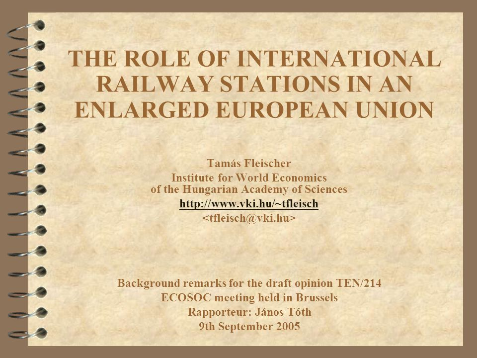 THE ROLE OF INTERNATIONAL RAILWAY STATIONS IN AN ENLARGED EUROPEAN UNION Tamás Fleischer Institute for World Economics of the Hungarian Academy of Sci