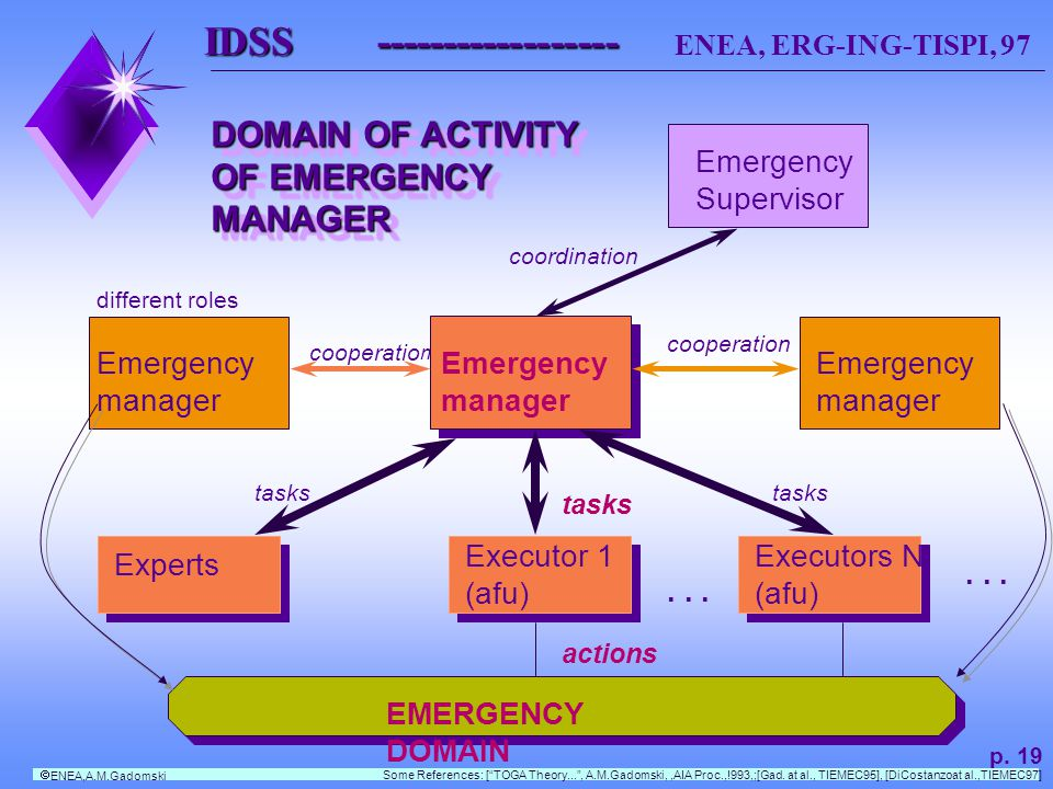 IDSS ------------------ IDSS ------------------ ENEA, ERG-ING-TISPI, 97 Emergency manager Emergency manager Emergency manager Experts Executor 1 (afu) Executors N (afu)...