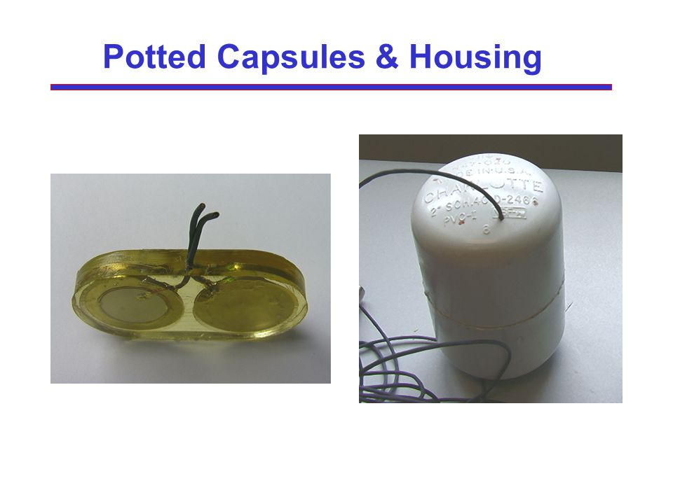 Potted Capsules & Housing