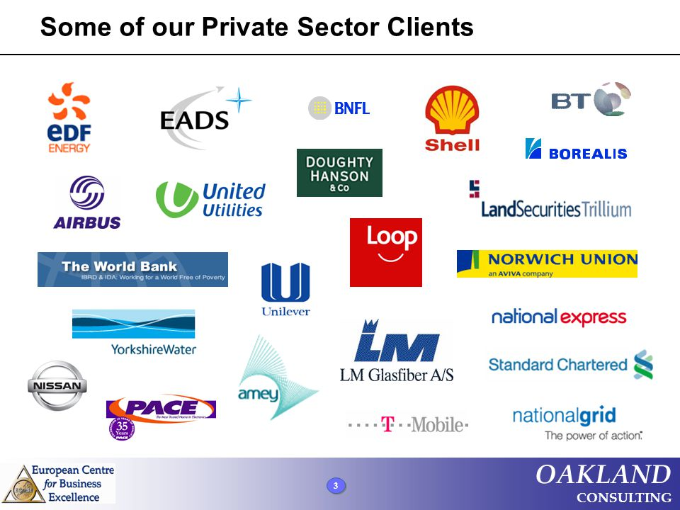 3 3 3 OAKLAND CONSULTING Some of our Private Sector Clients