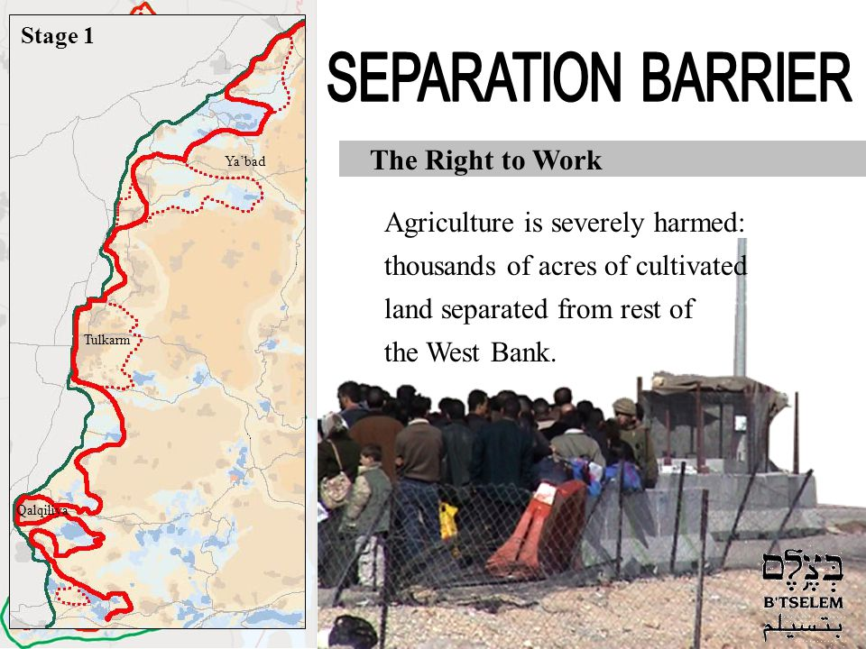 Jerusalem Jericho Hebron Nablus Jenin Tulkarm Qalqiliya Ramallah Bethlehem The Right to Work Agriculture is severely harmed: thousands of acres of cultivated land separated from rest of the West Bank.