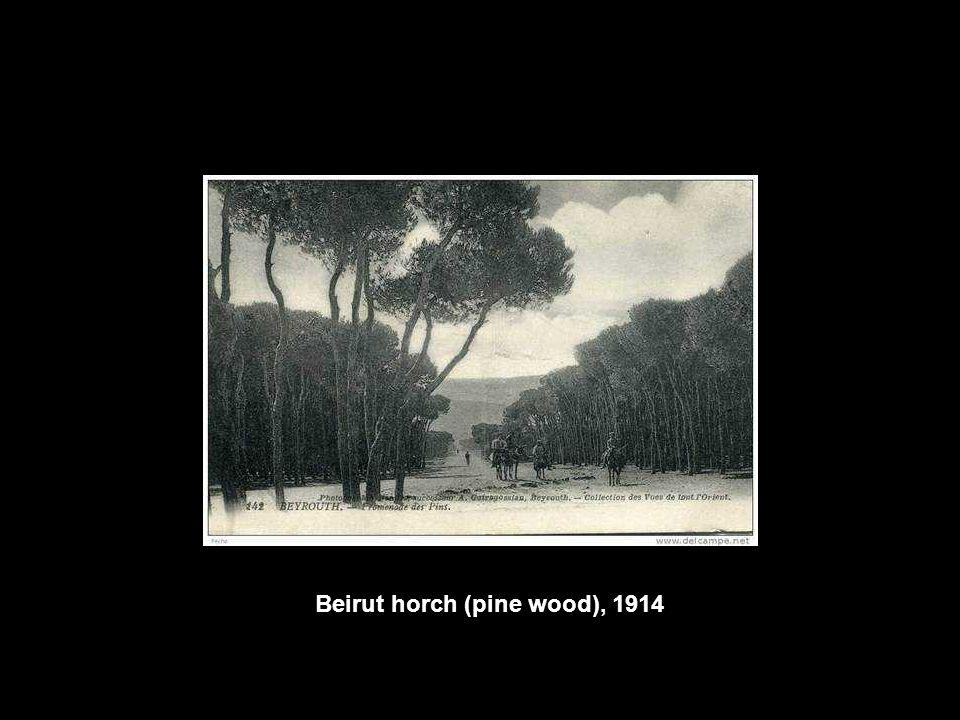 Beirut horch (pine wood), 1914