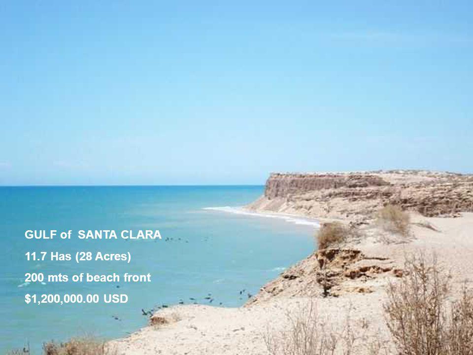 GULF of SANTA CLARA 11.7 Has (28 Acres) 200 mts of beach front $1,200,000.00 USD