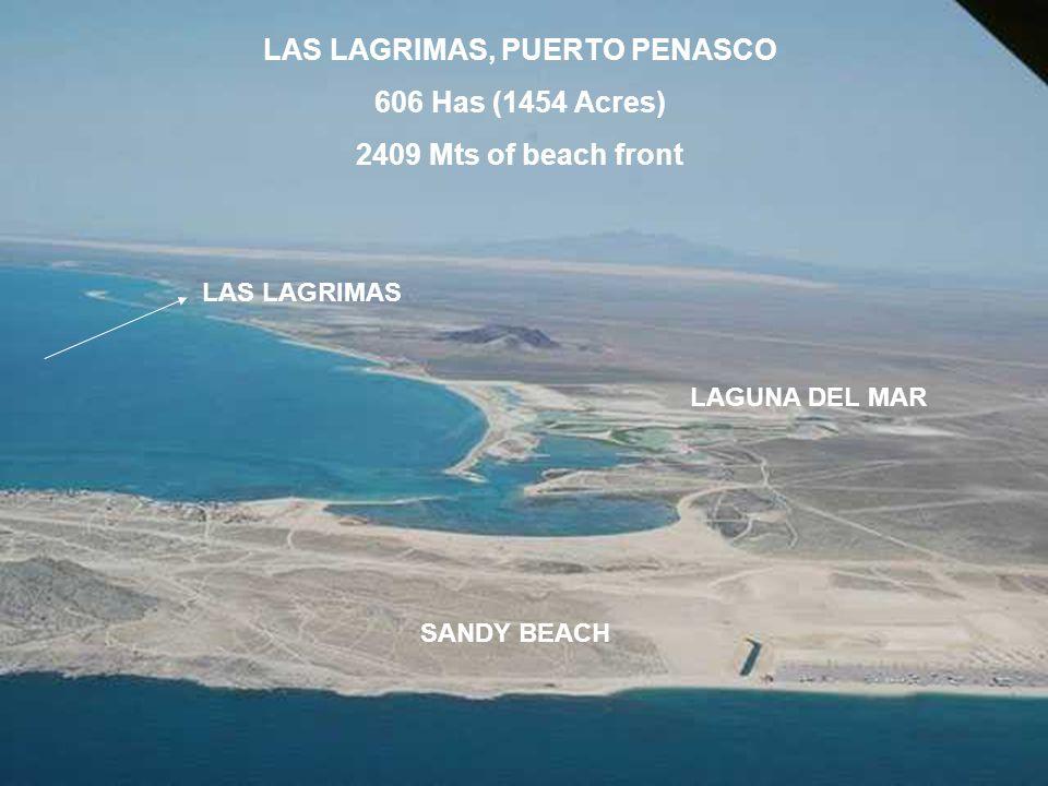 LAS LAGRIMAS, PUERTO PENASCO 606 Has (1454 Acres) 2409 Mts of beach front LAS LAGRIMAS LAGUNA DEL MAR SANDY BEACH