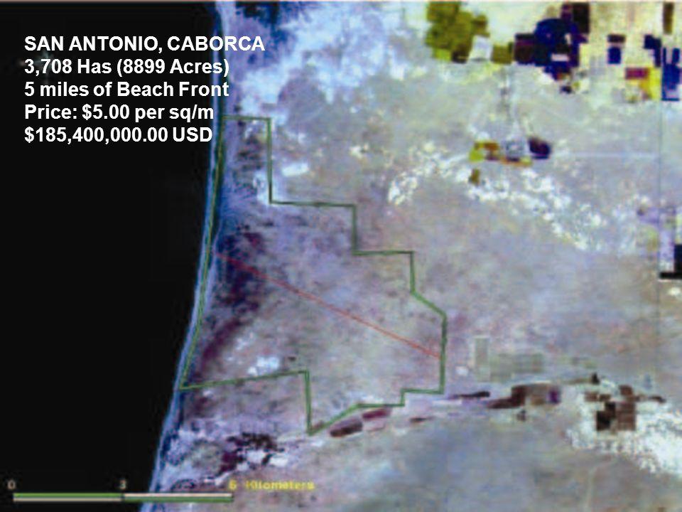 SAN ANTONIO, CABORCA 3,708 Has (8899 Acres) 5 miles of Beach Front Price: $5.00 per sq/m $185,400,000.00 USD