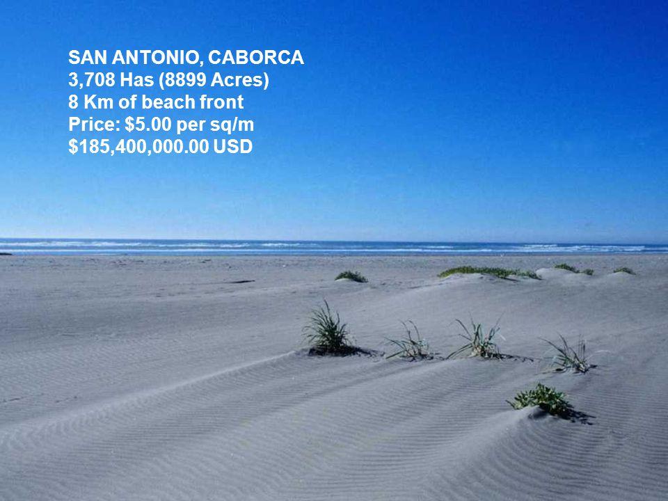 SAN ANTONIO, CABORCA 3,708 Has (8899 Acres) 8 Km of beach front Price: $5.00 per sq/m $185,400,000.00 USD