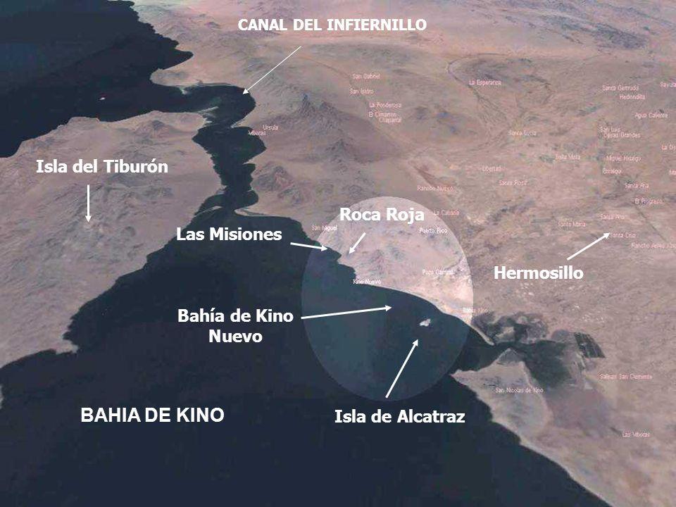 Isla del Tiburón CANAL DEL INFIERNILLO Las Misiones Bahía de Kino Nuevo Roca Roja Hermosillo Isla de Alcatraz BAHIA DE KINO
