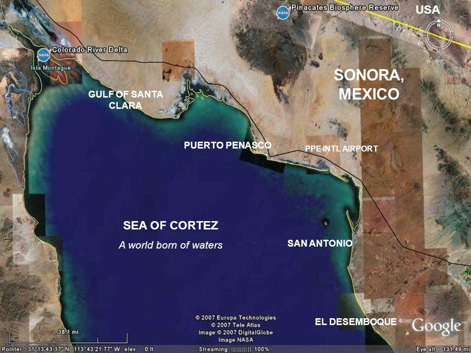 GULF OF SANTA CLARA PUERTO PENASCO SAN ANTONIO EL DESEMBOQUE SEA OF CORTEZ A world born of waters SONORA, MEXICO USA PPE INTL AIRPORT