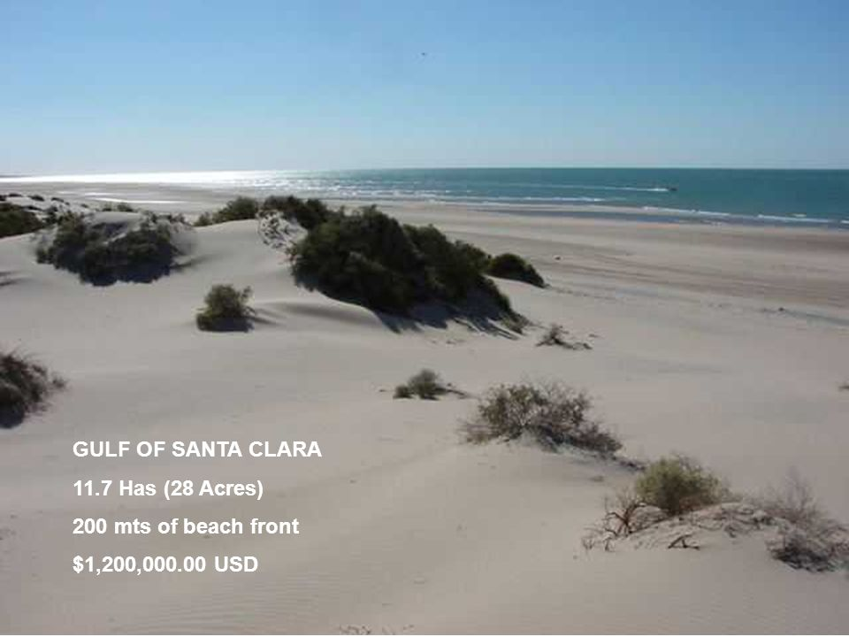 GULF OF SANTA CLARA 11.7 Has (28 Acres) 200 mts of beach front $1,200,000.00 USD