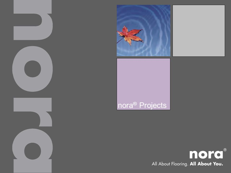 nora ® Projects