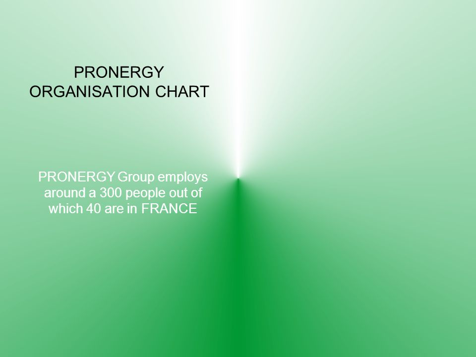 PRONERGY ORGANISATION CHART PRONERGY Group employs around a 300 people out of which 40 are in FRANCE