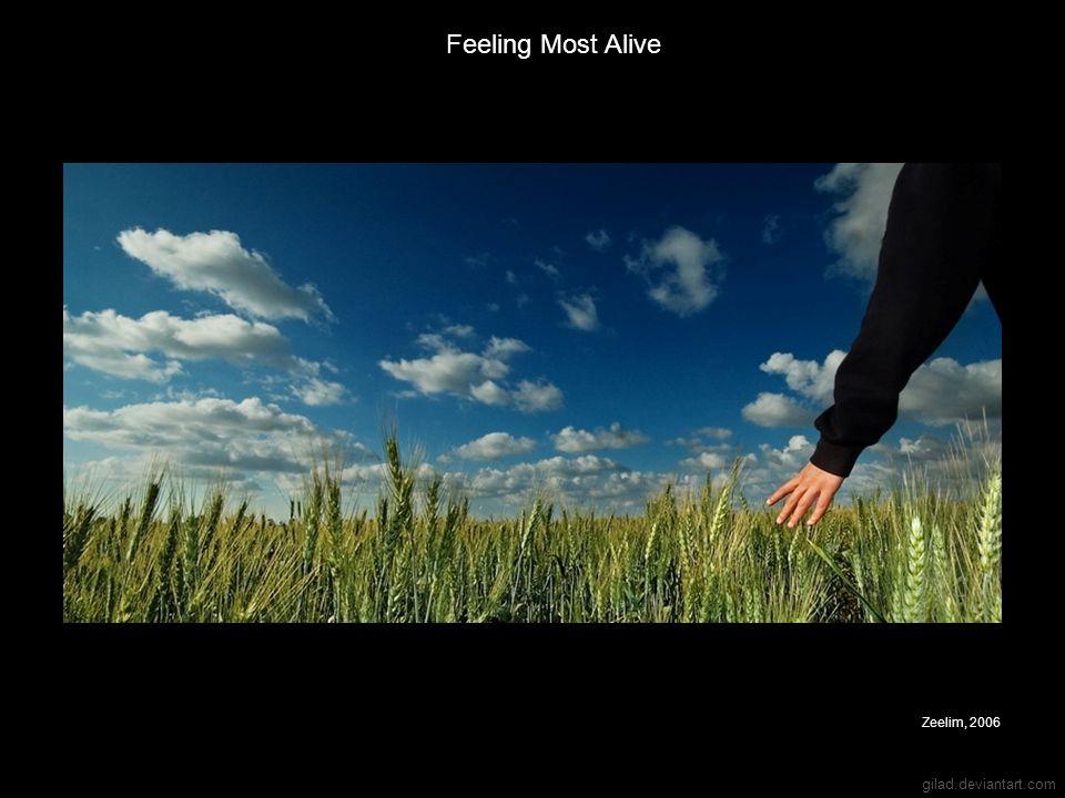 gilad.deviantart.com Feeling Most Alive Zeelim, 2006